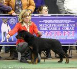 4.5 мес - призер BIS CACIB